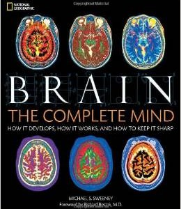 brain the complete mind